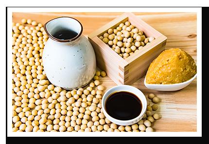 写真_発酵食品